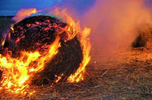 foin en feu