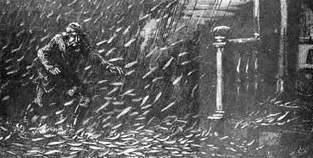 pluie de poissons