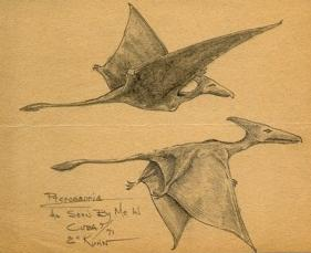 ptérodactyles par eskin kuhn