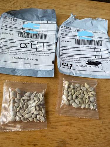 graines envoyées par la poste